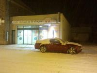 Mumu sous la neige.jpg