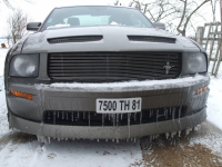 Mustang en Glace.jpg