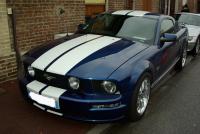 Mustang_2a.JPG