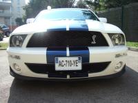20 - Shelby GT500 2009.JPG