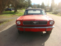 Mustang AV.jpg