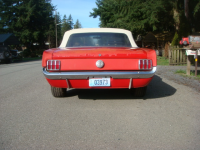 Mustang AR.jpg