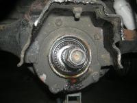 DSCN9601.JPG