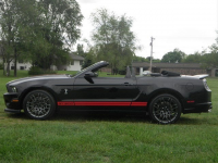 shelby 2013 cab noire.jpg